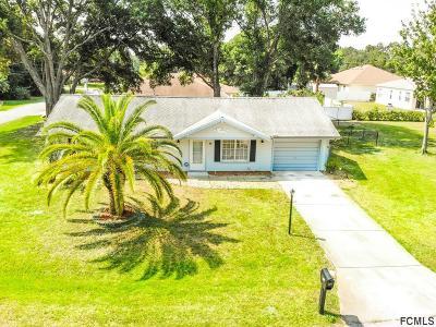 Palm Coast Single Family Home For Sale: 10 Pilgrim Drive
