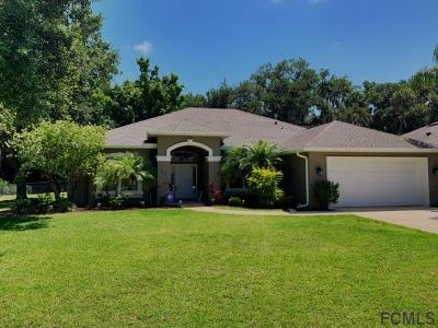 Ormond Beach Single Family Home For Sale: 23 Waterbluff Dr