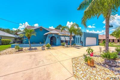 Palm Coast Single Family Home For Sale: 121 Cochise Court