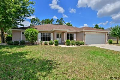 Ormond Beach Single Family Home For Sale: 50 Chrysanthemum Dr