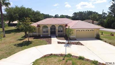 Pine Grove Single Family Home For Sale: 59 Pineapple Dr