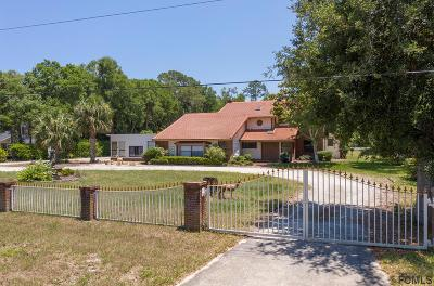 Flagler Beach Single Family Home For Sale: 39 Creek Bluff Run
