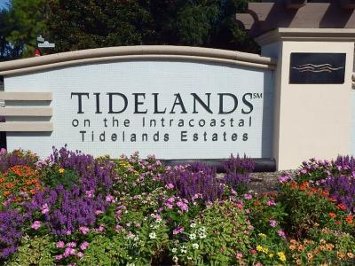 Tidelands Condo/Townhouse For Sale: 65 S Riverview Bend #1711