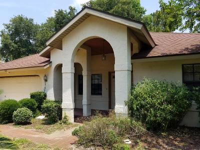Pine Grove Single Family Home For Sale: 103 Point Pleasant Drive