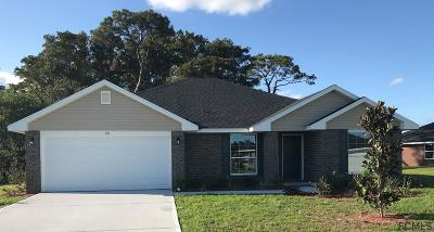 Flagler Beach Single Family Home For Sale: 20 Turtle Ridge Dr