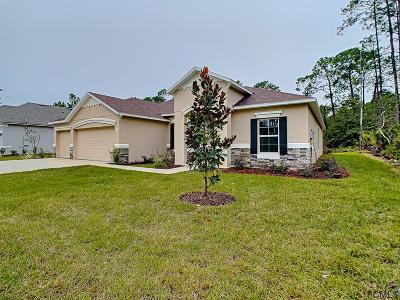 Palm Coast Single Family Home For Sale: 7 Lake Success Pl