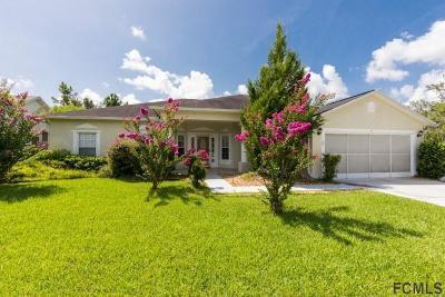 Palm Coast Single Family Home For Sale: 5 Burnet Place