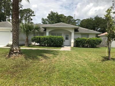 Palm Coast Single Family Home For Sale: 23 Woodfair Lane