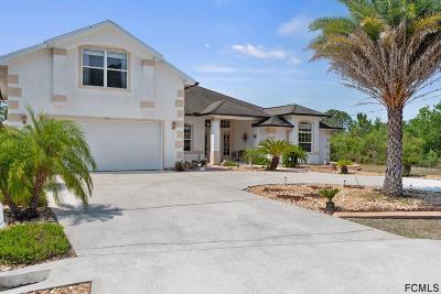 Palm Coast Single Family Home For Sale: 30 Rockefeller Drive