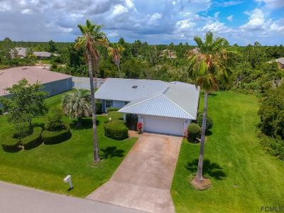 Palm Coast Single Family Home For Sale: 45 La Mancha Dr