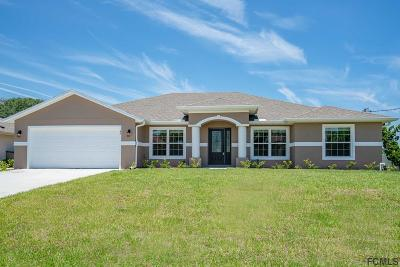 Palm Coast Single Family Home For Sale: 49 Armand Beach Dr
