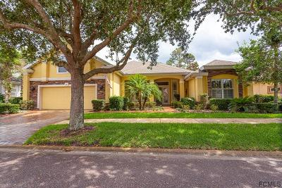 Palm Coast Single Family Home For Sale: 48 Osprey Cir