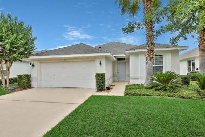 Palm Coast Single Family Home For Sale: 133 Raintree Cir