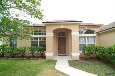 Palm Coast Single Family Home For Sale: 16 Rainbow Lane