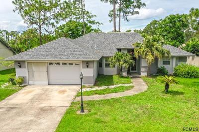 Palm Coast Single Family Home For Sale: 58 Wellington Drive