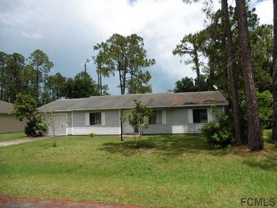Palm Coast Single Family Home For Sale: 77 E Wellstone Drive