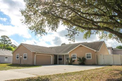 Palm Coast Multi Family Home For Sale: 325 Parkview Drive