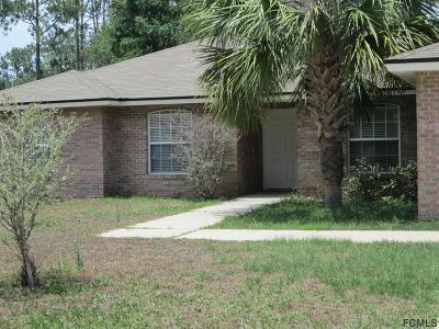 Palm Coast Single Family Home For Sale: 14 Renfro Lane