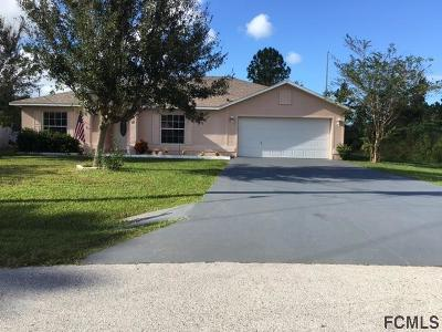 Palm Coast Single Family Home For Sale: 60 Biscayne Dr