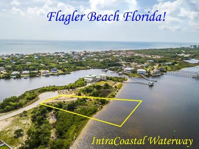 Flagler Beach Residential Lots & Land For Sale: 2560 Palm Ave