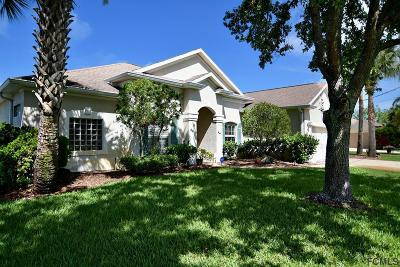 Palm Coast Single Family Home For Sale: 35 Clearview Ct N