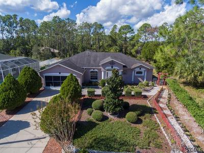 Palm Coast Single Family Home For Sale: 49 Presidential Lane
