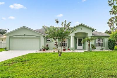 Palm Coast Single Family Home For Sale: 55 Ethan Allen Drive