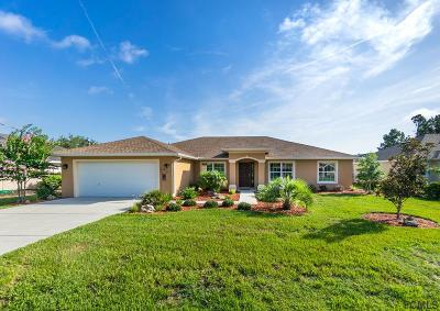Palm Coast Single Family Home For Sale: 30 Bud Field Drive