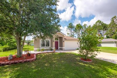 Palm Coast Single Family Home For Sale: 32 Perkins Lane