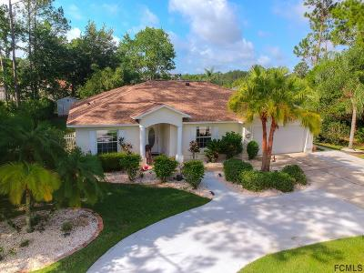 Palm Coast Single Family Home For Sale: 19 Eric Drive