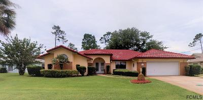 Palm Coast Single Family Home For Sale: 92 Westchester Ln
