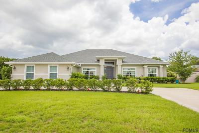 Ormond Beach Single Family Home For Sale: 3943 Cree Drive