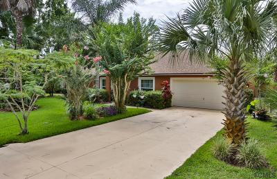 Palm Coast Single Family Home For Sale: 113 Ryan Drive