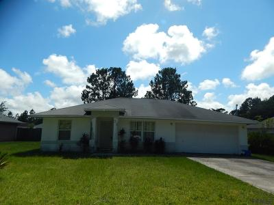 Palm Coast Single Family Home For Sale: 28 Freeland Lane