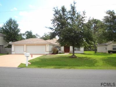 Palm Coast Single Family Home For Sale: 69 Burroughs Drive