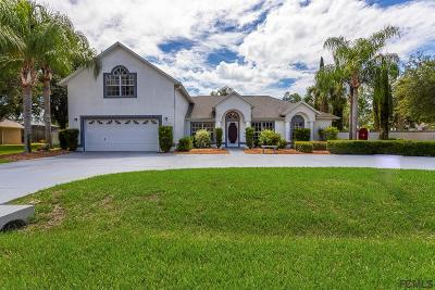 Palm Coast Single Family Home For Sale: 66 Eagle Harbor Trail
