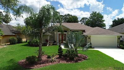 Ormond Beach Single Family Home For Sale: 20 Circle Creek Way