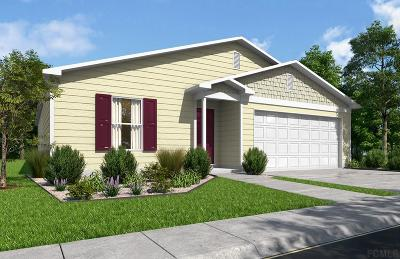 Palm Coast Single Family Home For Sale: 24 Point Pleasant Drive