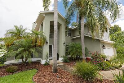 Palm Coast Single Family Home For Sale: 11 Conley Court