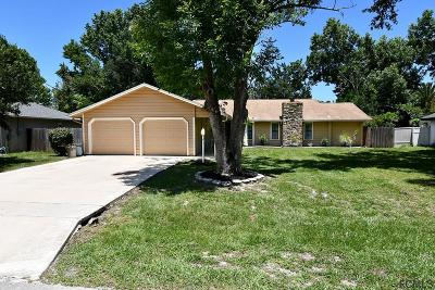 Palm Coast Single Family Home For Sale: 6 Patchogue Place