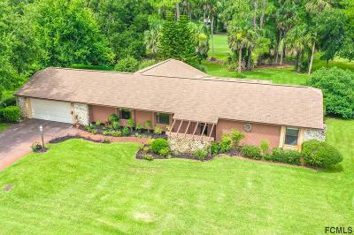 Palm Harbor Single Family Home For Sale: 20 Cole Place