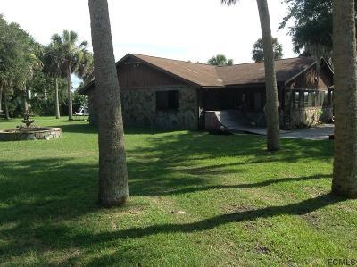 Flagler Beach FL Single Family Home For Sale: $499,000