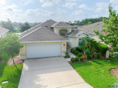 Palm Coast Single Family Home For Sale: 99 Raintree Cir