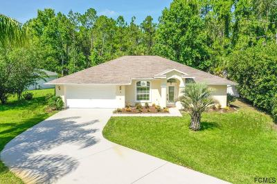 Palm Coast Single Family Home For Sale: 9 Wildwood Pl