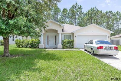 Palm Coast Single Family Home For Sale: 32 Llama Trail