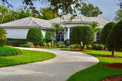 Palm Harbor Single Family Home For Sale: 12 Sentry Oak Pl