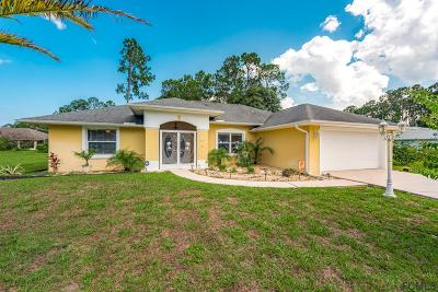 Palm Coast Single Family Home For Sale: 26 Barrister Ln