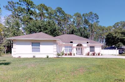 Palm Coast Single Family Home For Sale: 60 Eastwood Drive