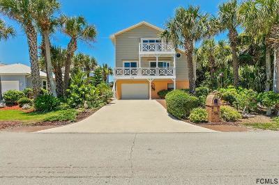 Flagler Beach Single Family Home For Sale: 1720 S Central Ave S
