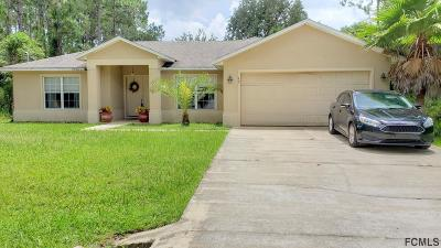 Palm Coast Single Family Home For Sale: 13 Palmer Lane
